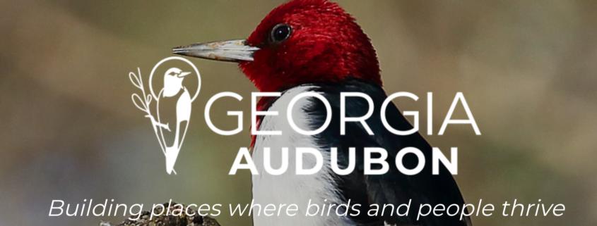 Georgia Audubon Isn't Just For The Birds 1